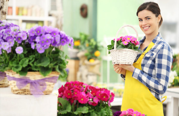 Unser Floristik & Schnittblumen Sortiment