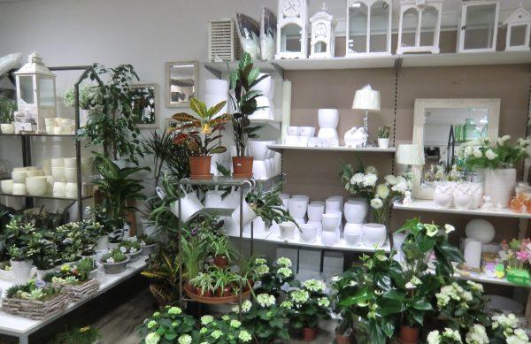 Blumen & mehr, im BERO-Einkaufszentrum, Concordiastr. 32 in Oberhausen