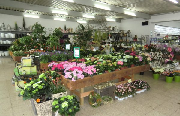 Speldorfer Pflanzenmarkt, Duisburger Str. 199 in Mülheim