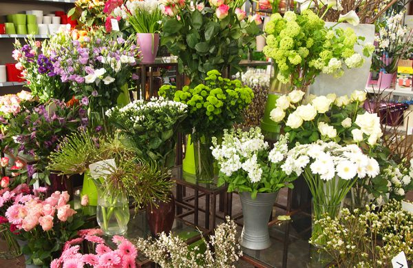 Wir haben eine große Auswahl frischer Schnittblumen für Sie